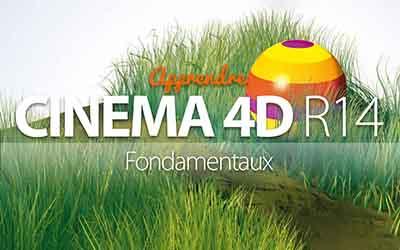 Cinema 4D R14 - De la modélisation au rendu |