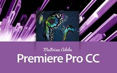 Premiere Pro CC - La formation la plus complète ! |