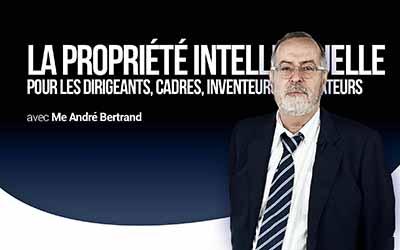 La propriété intellectuelle - Pour les dirigeants, cadres, inventeurs et créateurs |