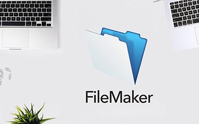 FileMaker Pro 13 |