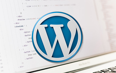 WordPress 4.x - Créez vos thèmes |