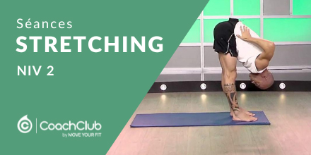 Stretching - Niveau 2 |