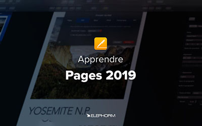 Pages 2019 |