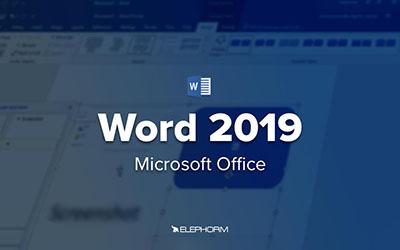 Word 2019 |
