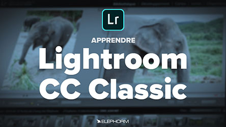 Lightroom Classic CC - La gestion du catalogue