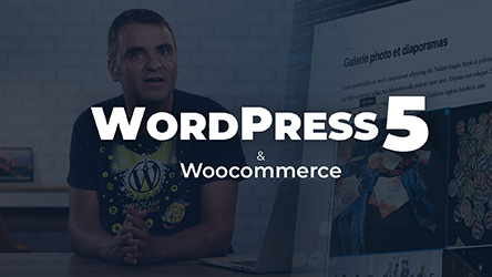 Wordpress 5 - Les fondamentaux |