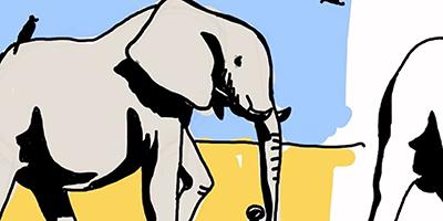 Dessiner un éléphant  